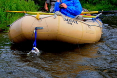 Create Listing: Guided Fly Fishing Trips in Alaska(Gulkana River Float trip)