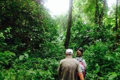 Create Listing: HIKING NATURE PLAN TOURS (BEACHES, CALM WATERS, JUNGLE)