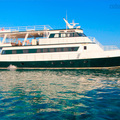 Create Listing: Avalon Fleet I - Yacht - Liveaboard Scuba Diving - Cuba