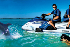 Create Listing: Jet Ski Dolphin Adventure Tours - 2 Hours