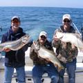 Create Listing: WALLEYE AND TROUT  (1-5 ANGLERS)