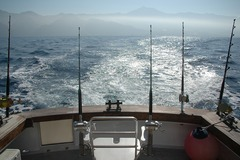Create Listing: Fishing Guide Service - Fun Experience in Fishing