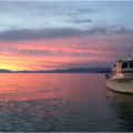 Create Listing: Morning 5-Hour Public Fishing Trip ( Ski Run Marina)