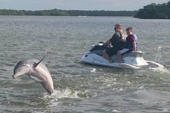 Create Listing: Dolphin Tours - Fort Myers Beach - Tour by Waverunners