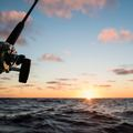 Create Listing: Saltwater Offshore Fishing - Tours & Guides