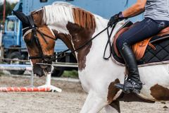 Create Listing: Horseback Riding - Classes & Lessons