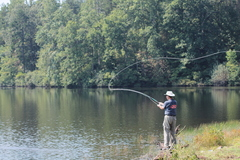 Create Listing: Fly Fishing - Tours & Guides