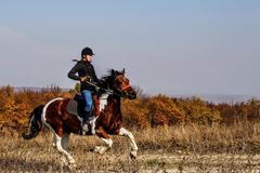 Create Listing: Horseback Riding - Experiences
