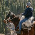 Create Listing: Horseback Riding - Tours & Guides