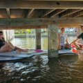 Create Listing: Manatee Pocket Mini Paddle Tour