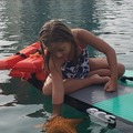 Create Listing: Sea Star Eco Exploration Mini Paddle Tour