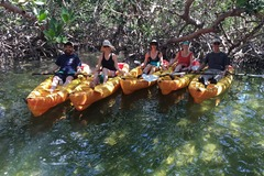 Create Listing: 2 Hr. Eco Tour - Kayaks or Paddleboards (2pm)