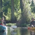 Create Listing: Eco Easy SELF GUIDED Kayak Tour
