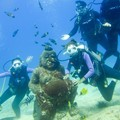 Create Listing: Discover Scuba Diving