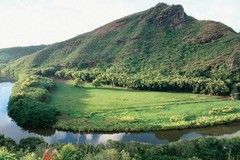 Create Listing: Waimea Canyon, Wailua River & Fern Grotto Tour