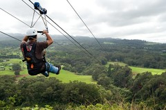 Create Listing: 5 Line Side By Side Zipline Tour