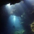 Create Listing: Lava Tube Dives - North Shore