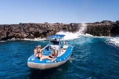 Create Listing: Dolphin Eco-Adventure & Reef Snorkel