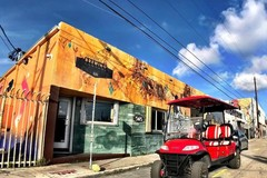 Create Listing: Private VIP Wynwood Buggies Tour