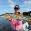 Create Listing: Fishing Charter 1-4 people - 4 Hours