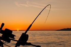 Create Listing: Fishing and Snorkel Rentals (back end only)