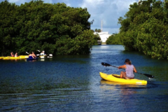 Create Listing: 3  1/2 Hour Kayak & Backcountry Snorkel Tour