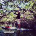 Create Listing: 2 Hour Paddleboard Eco Tour - Lesson included!