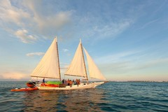 Create Listing: Full Day Premium Sail, Snorkel, Kayak with Lunch - 6.5 Hours