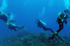 Create Listing: Scuba Diving Packages - 2 Tank BOAT Dive