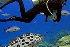 Create Listing: Scuba International Nitrox Specialty Certification Session