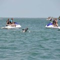 Create Listing: Captiva Island - Waverunner Tour