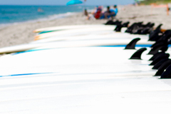 Create Listing: Surfboard Rental