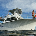 Create Listing: The Giant Stride - Half Day Charter