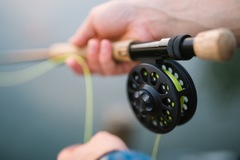 Create Listing: Fishing, Boating -​We provide rods, reels, tackle, live bait