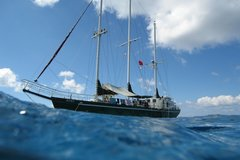 Create Listing: Cruise - Bahamas Scuba Diving Liveaboard (10 days, 9 nights)