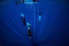 Create Listing: DIVING COURSES - Level 2 (spearfishermen,  freedivers)
