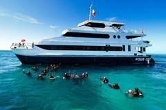 Create Listing: Aqua Cat Cruise and Dive Adventures (Diving Liveabroad)