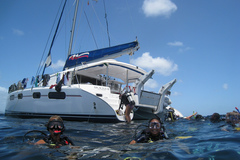 Create Listing: BVI S.E.A. Voyages(adventures for teenagers)(21 day Cruise)