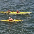 Create Listing: Watersports, Kayaking-Clear Kayak Rentals + Dolphin Watching